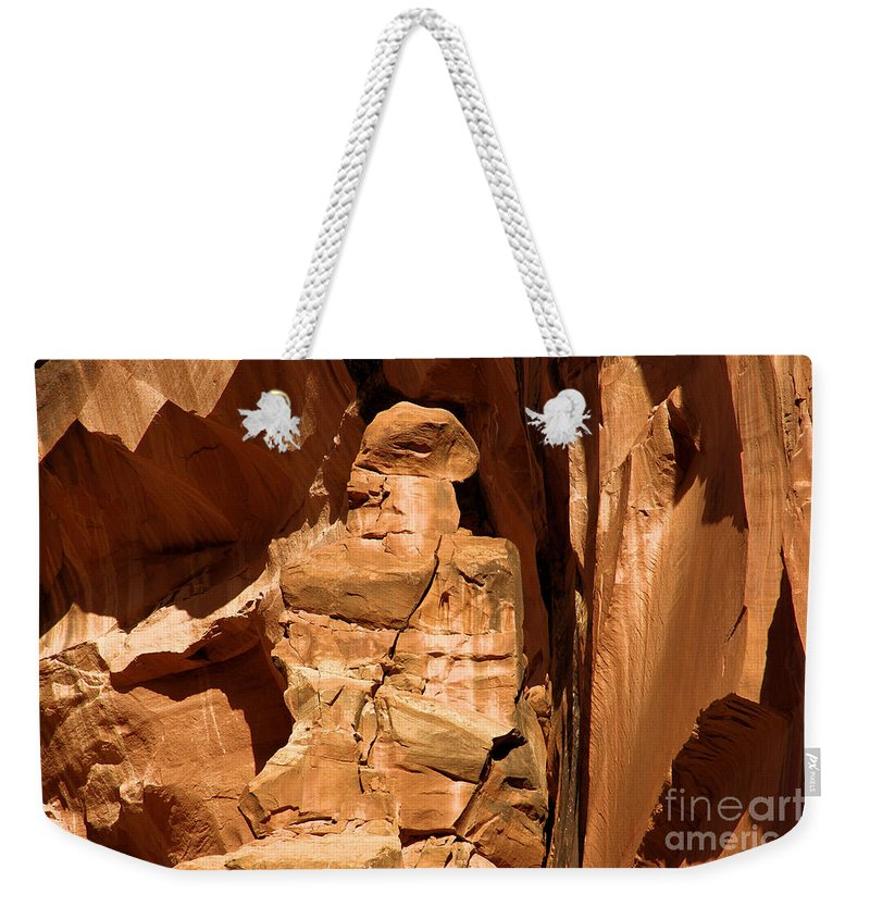 Alien Encounter Weekender Tote Bag featuring the photograph Alien Encounter by Adam Jewell