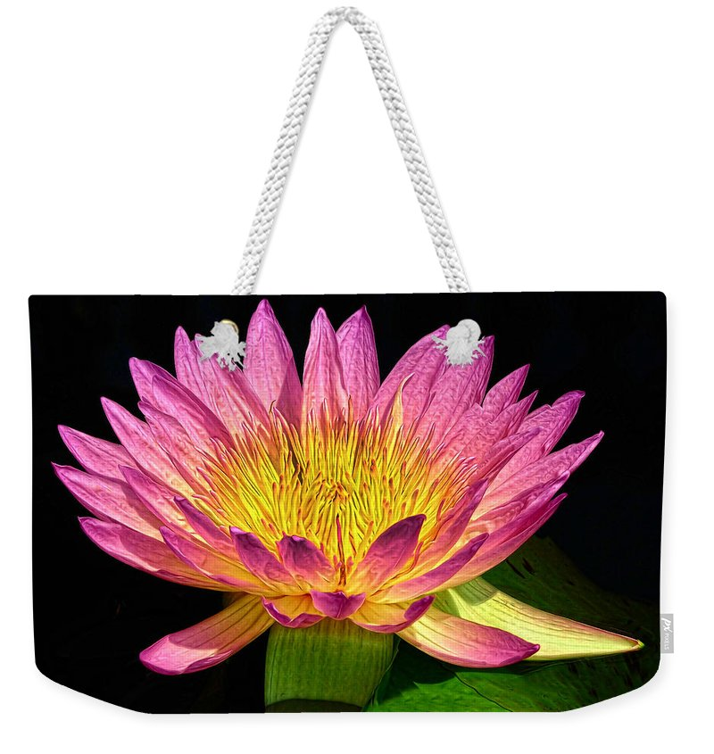 Waterlily Weekender Tote Bag featuring the photograph Alive With Color by Dave Mills