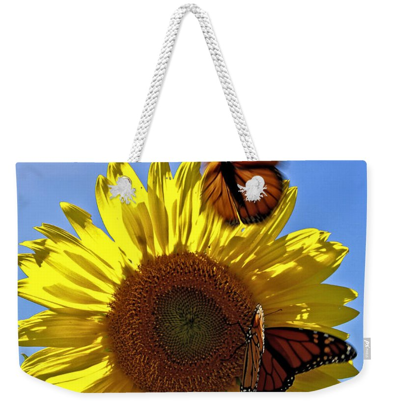 Sunflowers Weekender Tote Bag featuring the photograph All A Flutter by Brenda Giasson