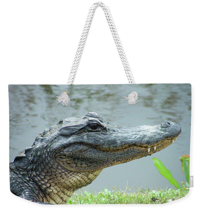 Gator Weekender Tote Bag featuring the digital art Alligator Cameron Prairie Nwr La by Lizi Beard-Ward