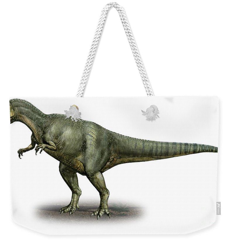Horizontal Weekender Tote Bag featuring the digital art Allosaurus Fragilis, A Prehistoric Era by Sergey Krasovskiy