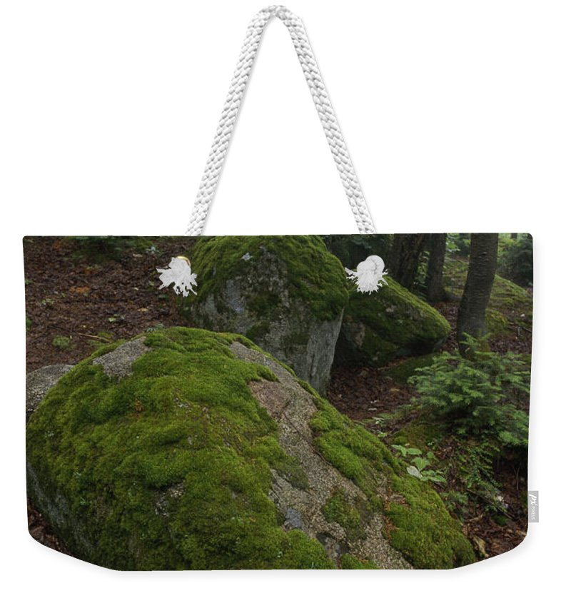 North America Weekender Tote Bag featuring the photograph Along The Russell Pond Trail, A Young by George F. Mobley