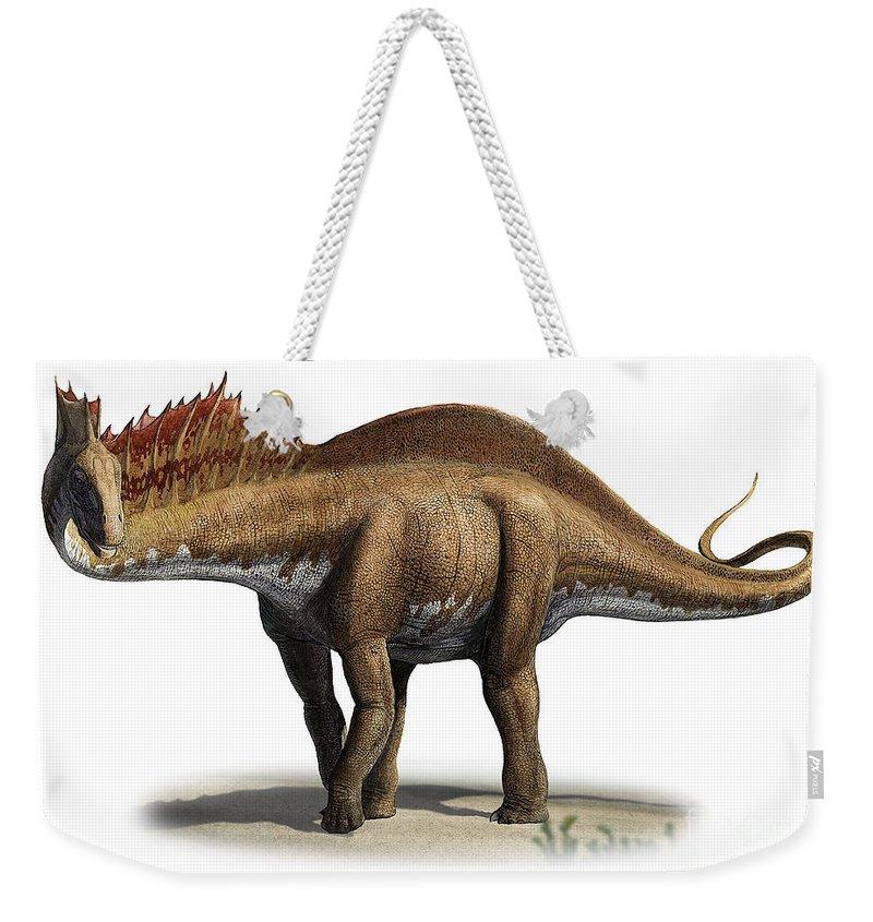 Horizontal Weekender Tote Bag featuring the digital art Amargasaurus Cazaui, A Prehistoric Era by Sergey Krasovskiy