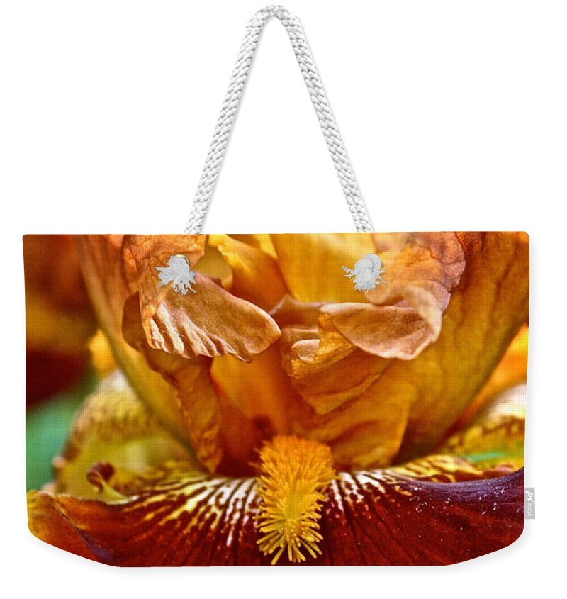 Plant Weekender Tote Bag featuring the photograph Amber Stripes by Susan Herber