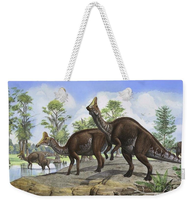 Amurosaurus Riabinini Weekender Tote Bag featuring the digital art Amurosaurus Riabinini Dinosaurs Grazing by Sergey Krasovskiy