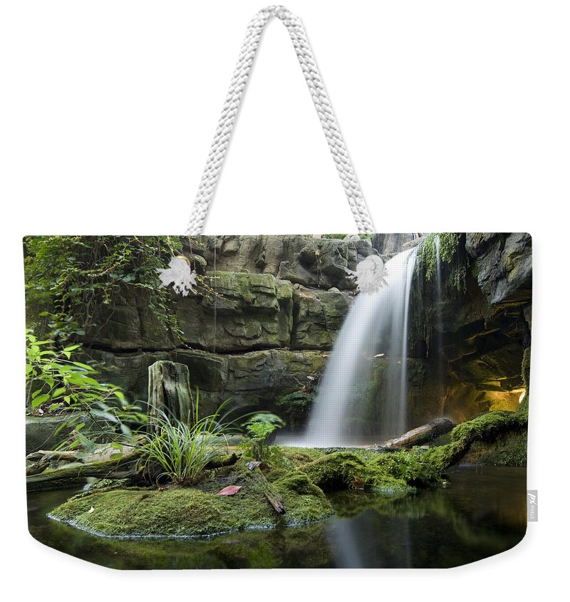 Chattanooga Weekender Tote Bag featuring the photograph An Aquarium In Tennessee by Joel Sartore