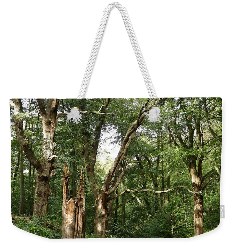 Ancient Woodland Weekender Tote Bag featuring the photograph Ancient Woodland by Bob Kemp