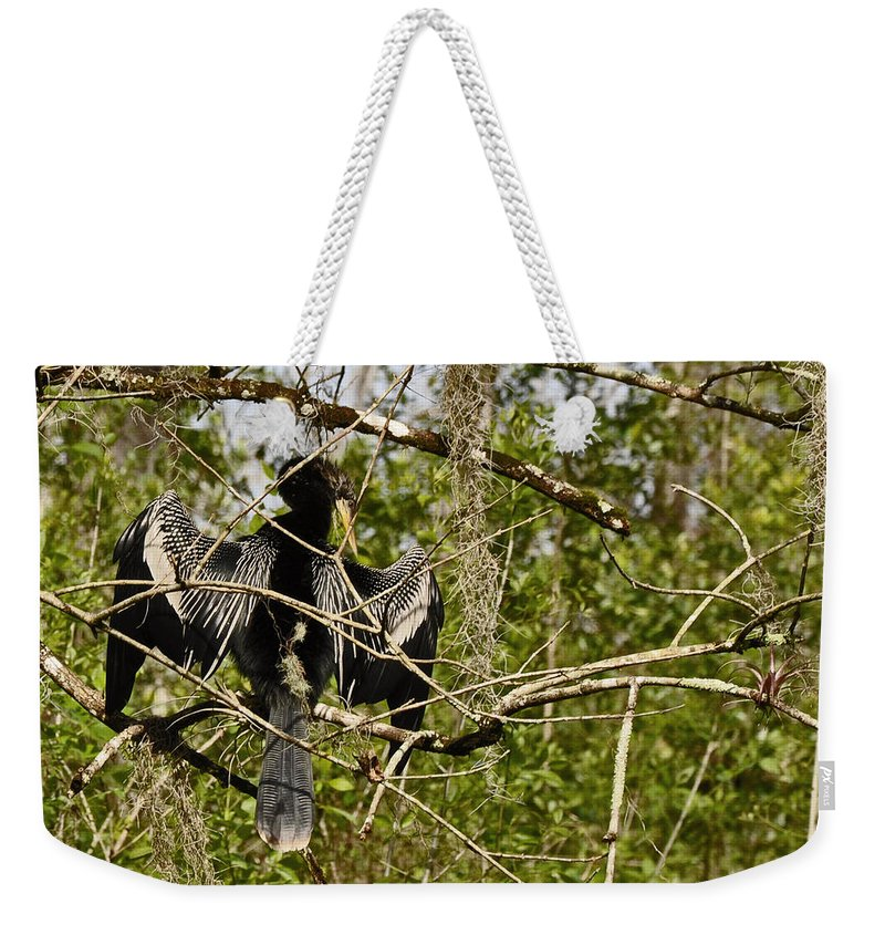 Corksrew Swamp Santuary Weekender Tote Bag featuring the photograph Anhinga Preening by Christine Stonebridge