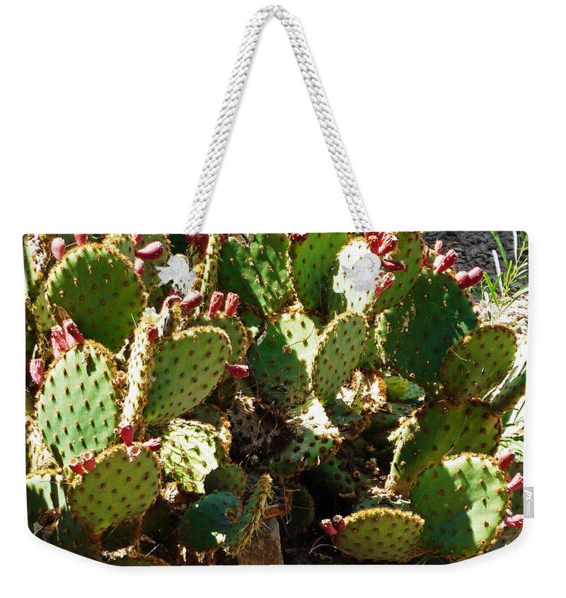 Arizona Prickly Pear Cactus Weekender Tote Bag featuring the photograph Arizona Prickly Pear Cactus by Methune Hively