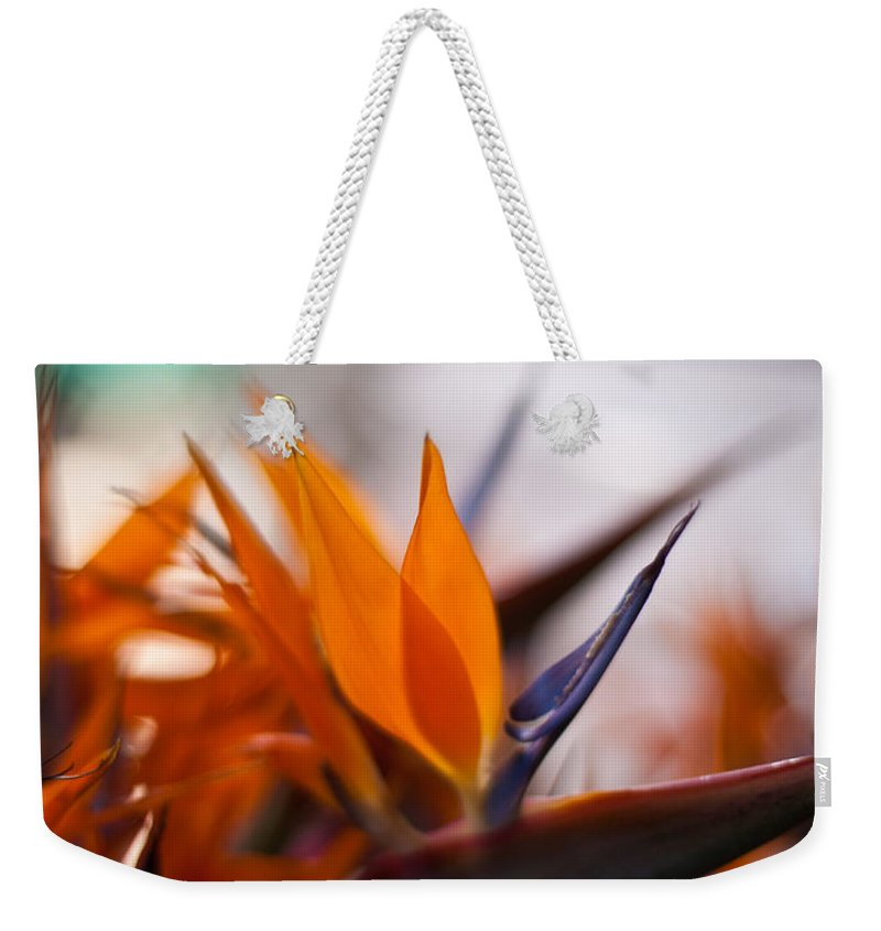Tropical Weekender Tote Bag featuring the photograph At The Flower Market by Mike Reid