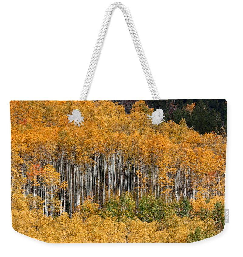 Autumn Colors Photograph Weekender Tote Bag featuring the photograph Autumn Curtain by Jim Garrison