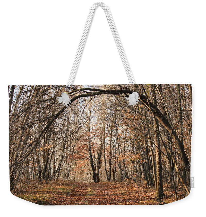 Trees Weekender Tote Bag featuring the photograph Autumn In The Woods by Penny Meyers