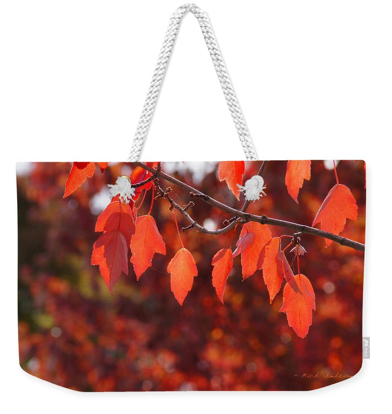 Medford Weekender Tote Bag featuring the photograph Autumn Leaves In Medford by Mick Anderson
