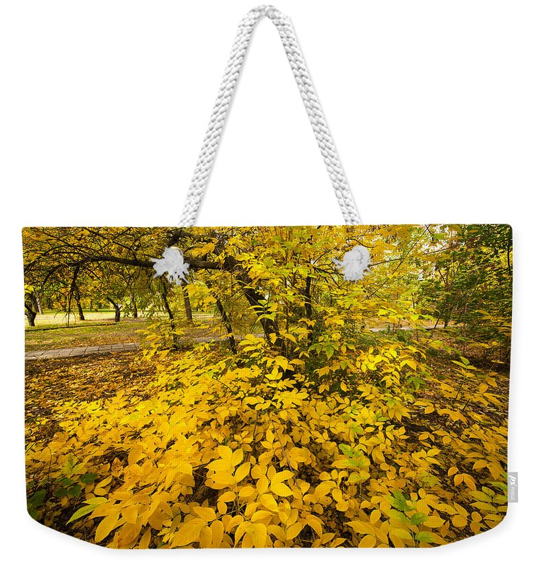 Art Weekender Tote Bag featuring the photograph Autumn Leaves by Svetlana Sewell