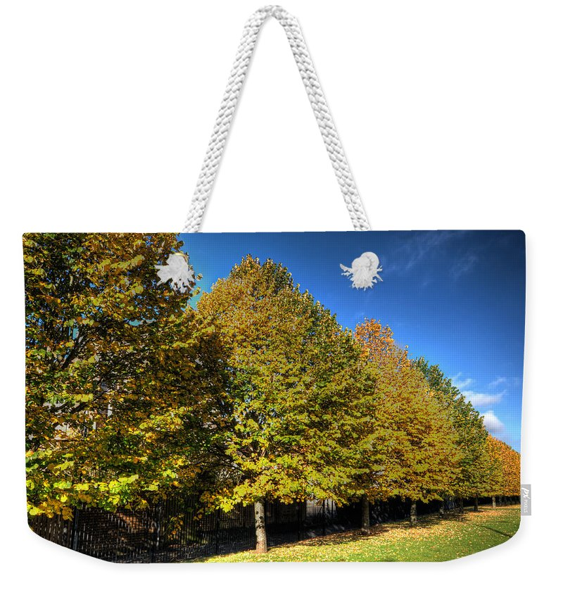 Autumn Trees Weekender Tote Bag featuring the photograph Autumn Row by Steve Purnell