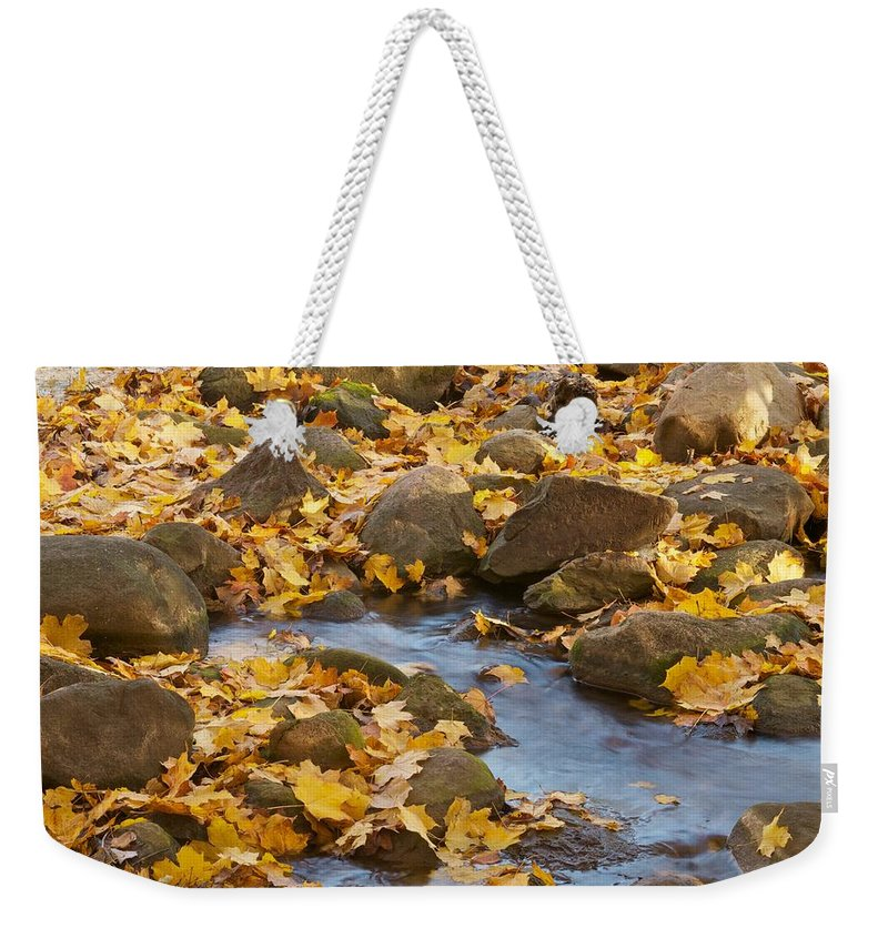 Autumn Weekender Tote Bag featuring the photograph Autumn Slipping Away 0437 by Michael Peychich