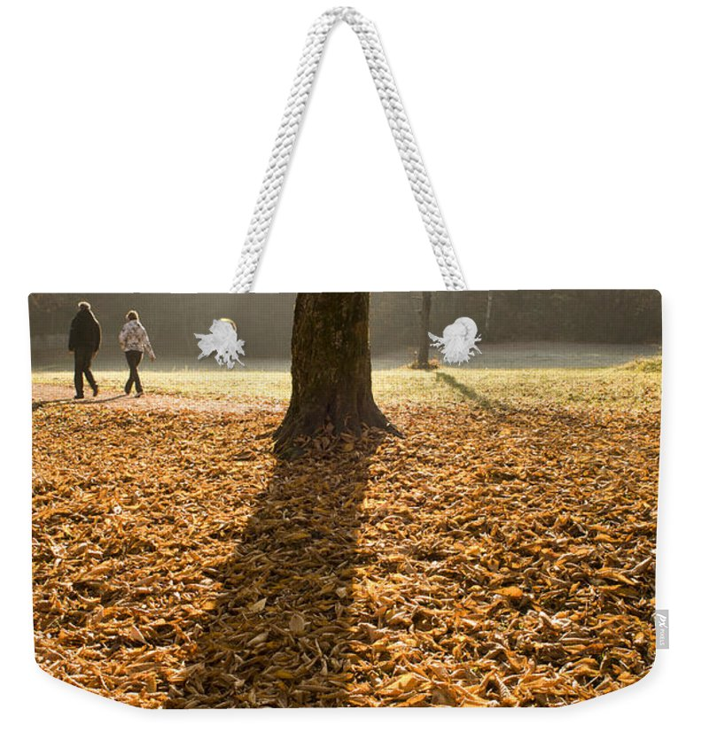 Autumn Weekender Tote Bag featuring the photograph Autumn Stroll by Ian Middleton