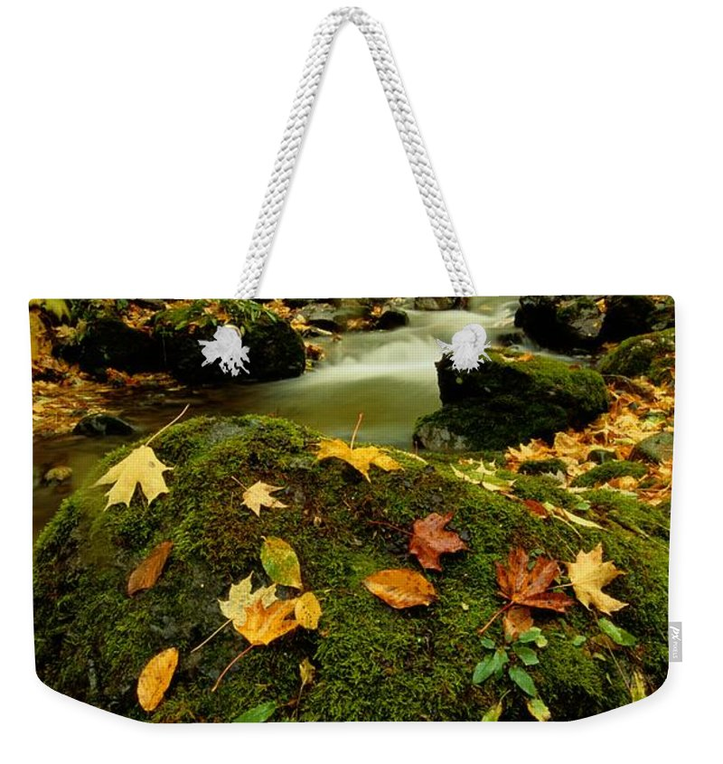 North America Weekender Tote Bag featuring the photograph Autumn View Shows Fallen Leaves by Raymond Gehman