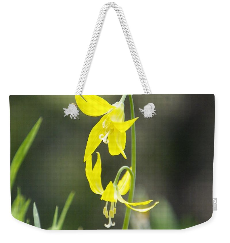 Lily Weekender Tote Bag featuring the photograph Avalanche Lily by Marilyn Wilson