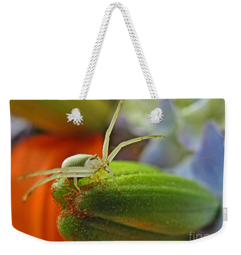 Nature Weekender Tote Bag featuring the photograph Back Off by Debbie Portwood