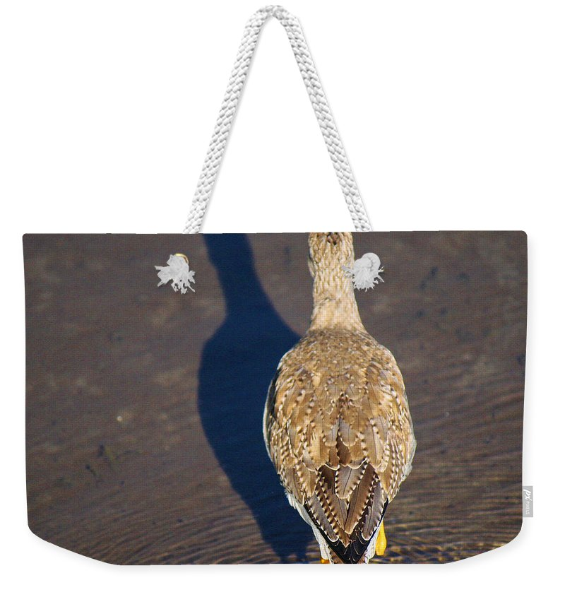 Roena King Weekender Tote Bag featuring the photograph Back Side by Roena King