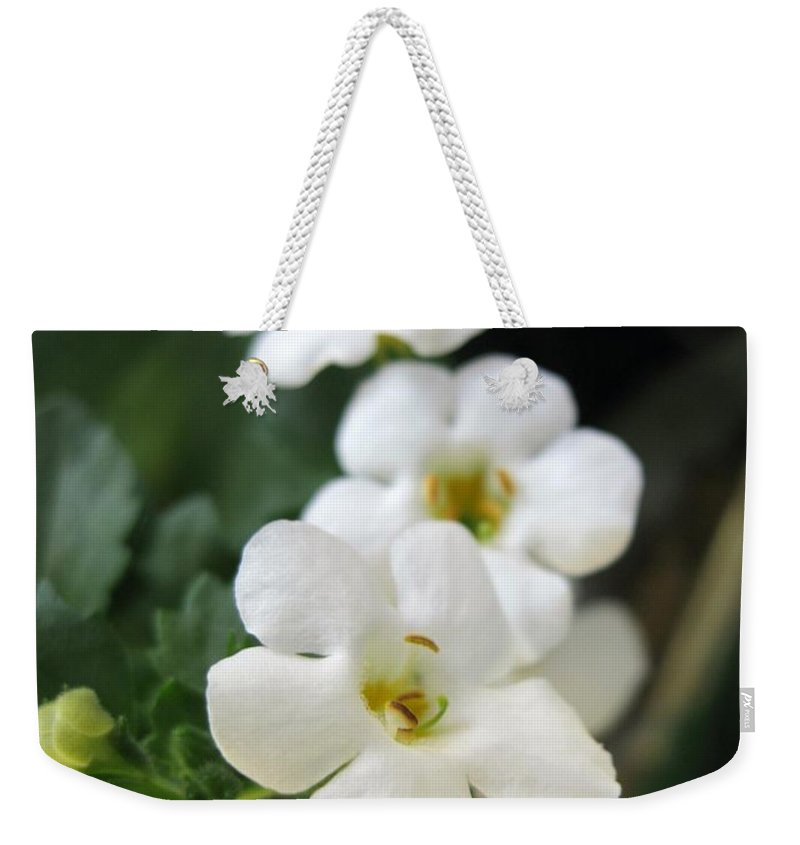 Bacopa Weekender Tote Bag featuring the photograph Bacopa Named Snowtopia by J McCombie
