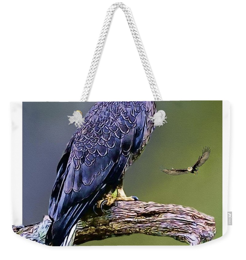 Bald Eagle Weekender Tote Bag featuring the painting Bald Eagle by Tom Schmidt