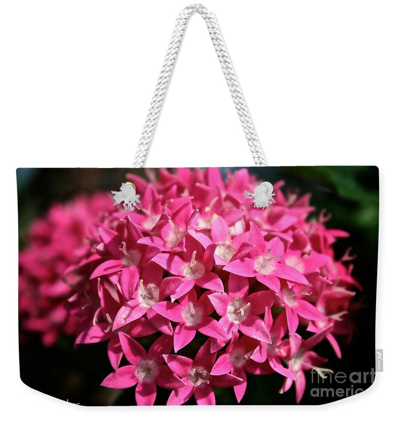 Plant Weekender Tote Bag featuring the photograph Ball Of Stars by Susan Herber