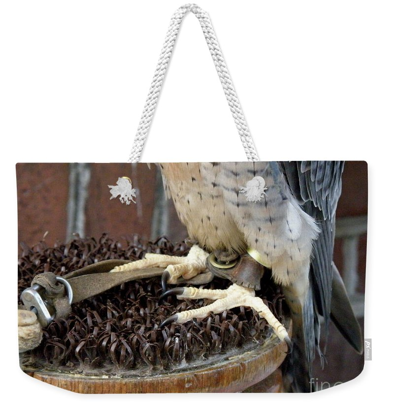 Barbary Falcon Weekender Tote Bag featuring the photograph Barbary Falcon Feet by Lainie Wrightson
