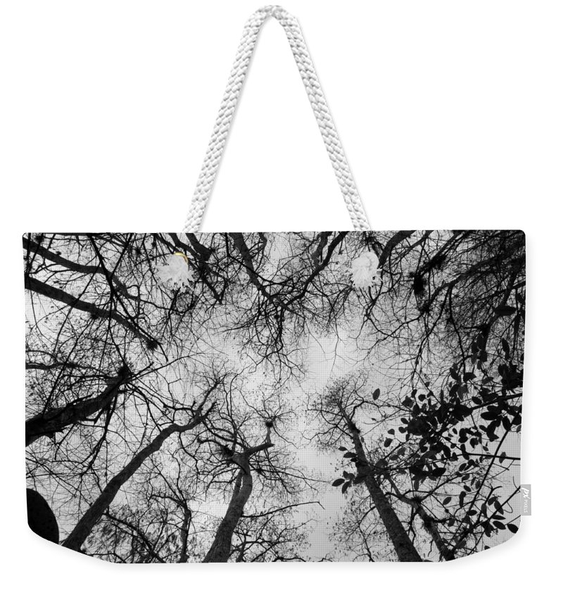 Cypress Trees Weekender Tote Bag featuring the photograph Bare Cypress by Christine Stonebridge