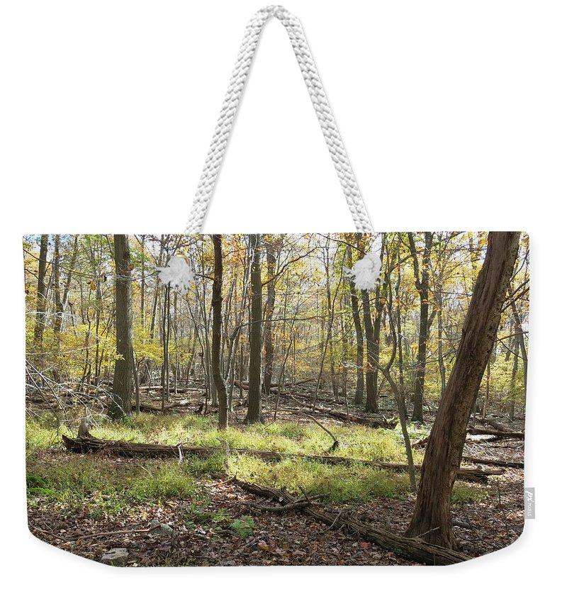 Hawk Weekender Tote Bag featuring the photograph Base Of Hawk Watch by Jean Macaluso