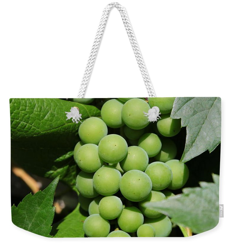 Grapes Weekender Tote Bag featuring the photograph Beautiful Grapes by Carol Groenen