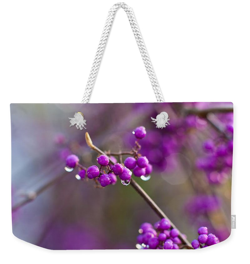 Beauty Berry Weekender Tote Bag featuring the photograph Beauty Berry Explosion by Mike Reid