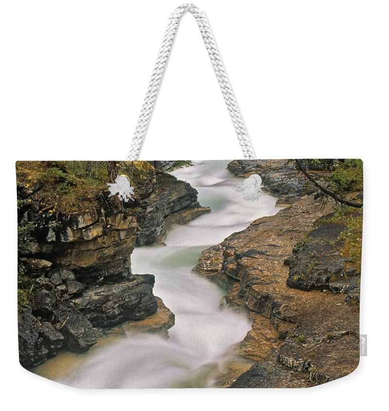 Light Weekender Tote Bag featuring the photograph Beauty Creek, Banff National Park by Darwin Wiggett