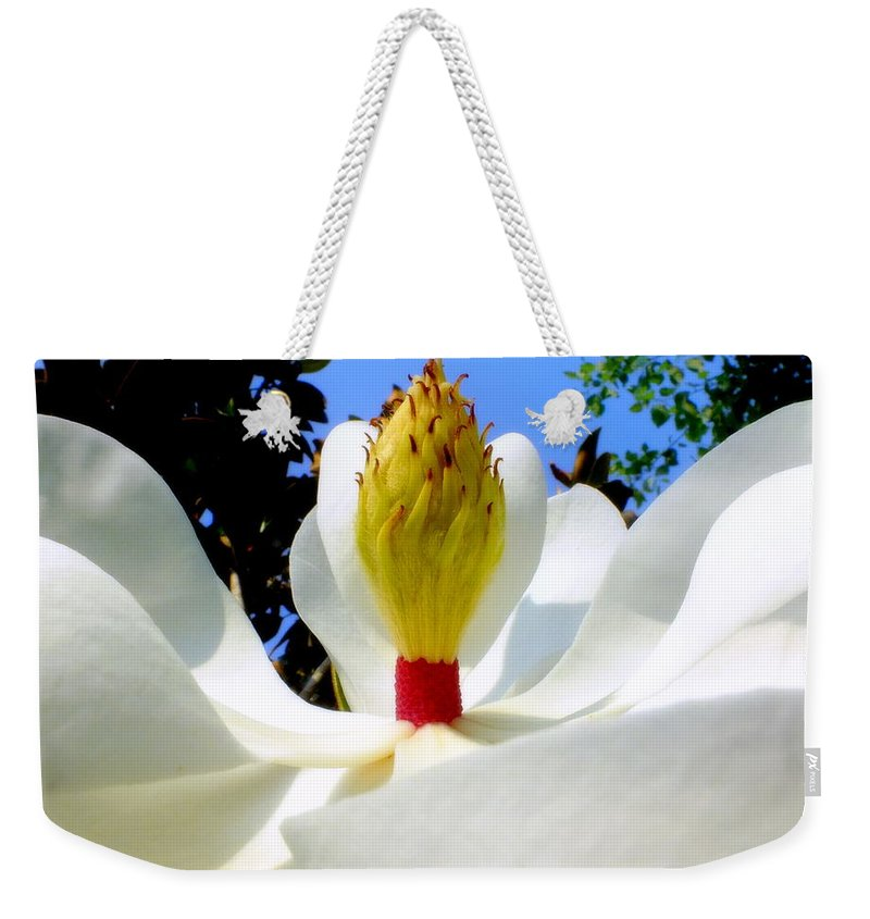 Magnolias Weekender Tote Bag featuring the photograph Bed Of Magnolia by Karen Wiles