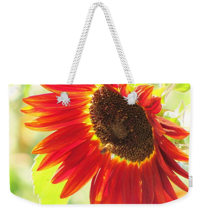Sunflowers Weekender Tote Bag featuring the photograph Bee On A Sunflower by Michelle Cassella