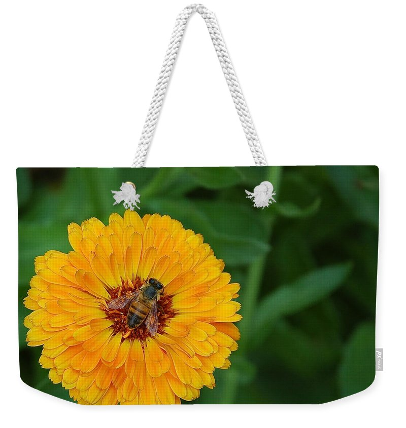 Bee Weekender Tote Bag featuring the photograph Bee On Yellow Flower by Sean Wray