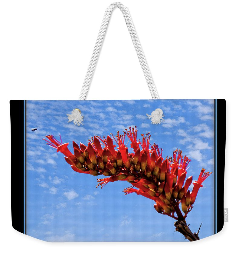 Bee Weekender Tote Bag featuring the photograph Bee With Red Flower 1 by Larry White