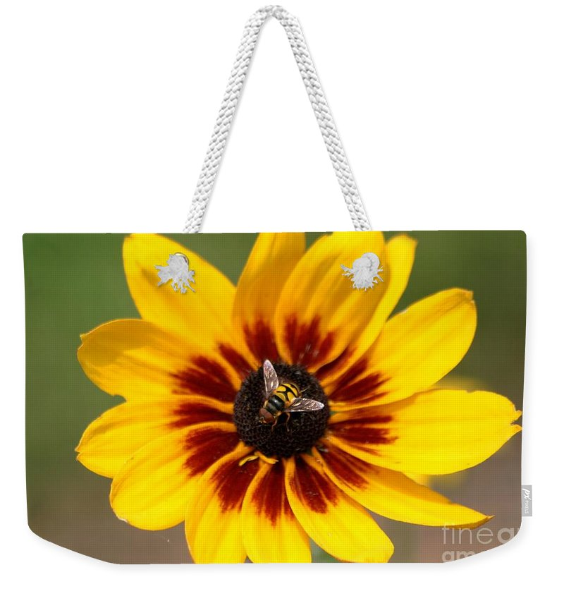 Bee Weekender Tote Bag featuring the photograph Beeutiful by Living Color Photography Lorraine Lynch