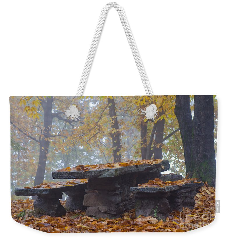 Bench Weekender Tote Bag featuring the photograph Benches And Table In Autumn by Mats Silvan