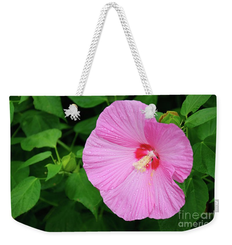Flower Weekender Tote Bag featuring the photograph Big Bold Pink Beauty by Andee Design