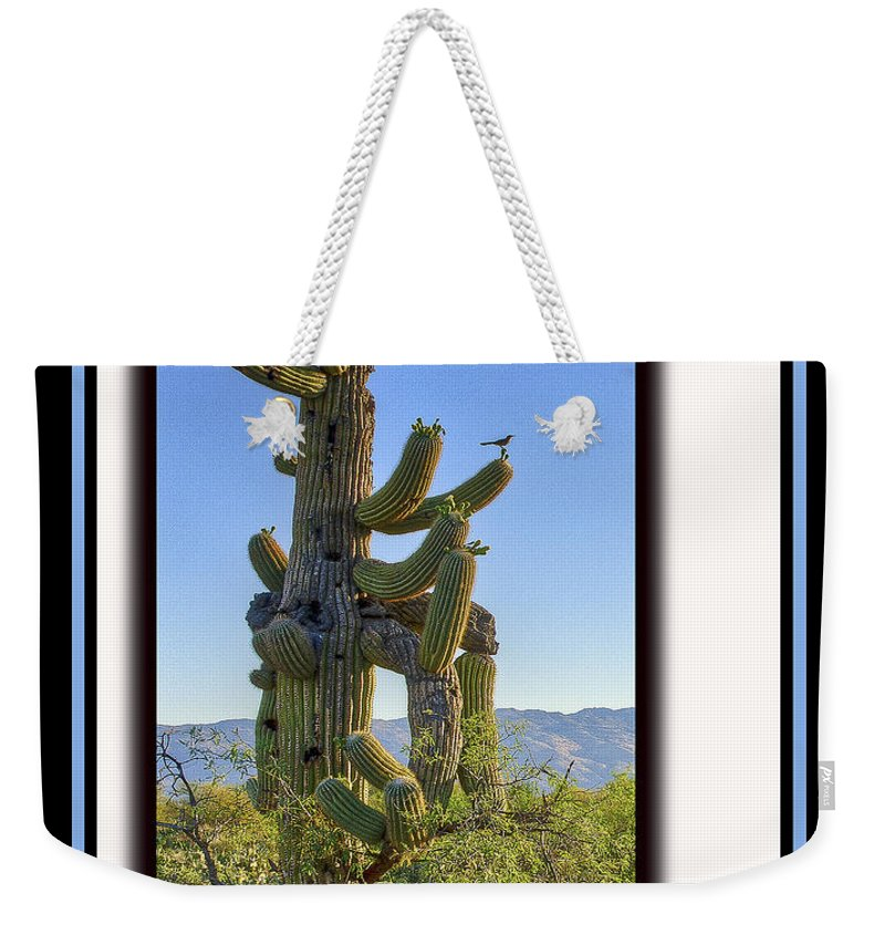 Bird Weekender Tote Bag featuring the photograph Bird On Cactus by Larry White