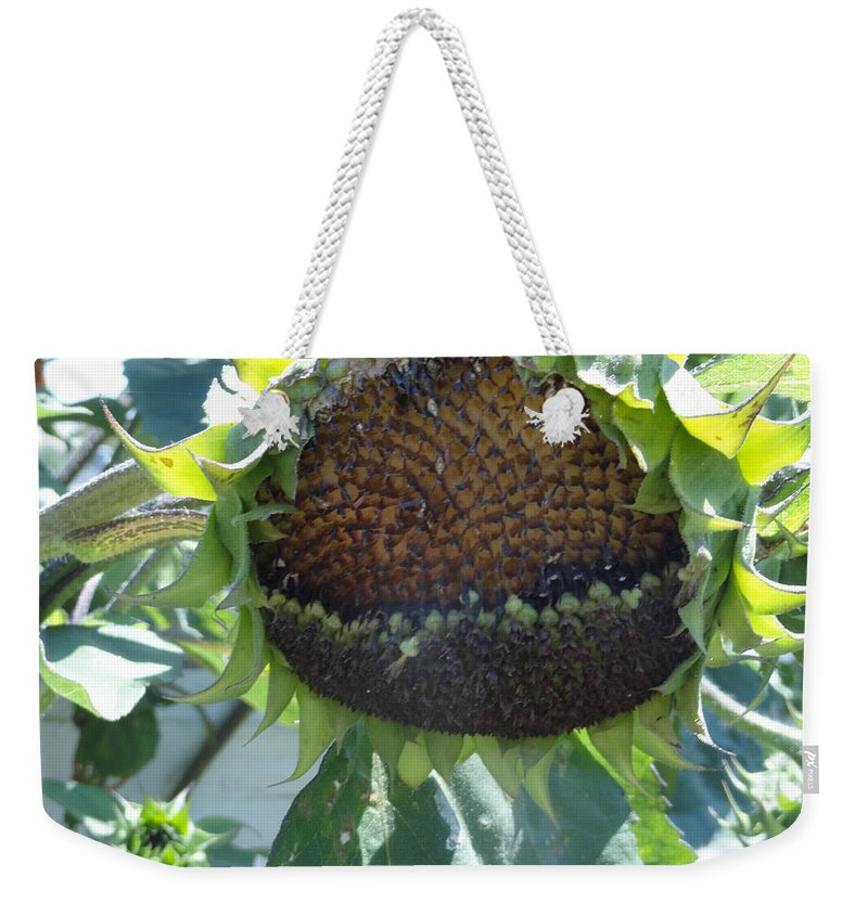 Sunflower Weekender Tote Bag featuring the photograph Bird Seed by Shannon Grissom