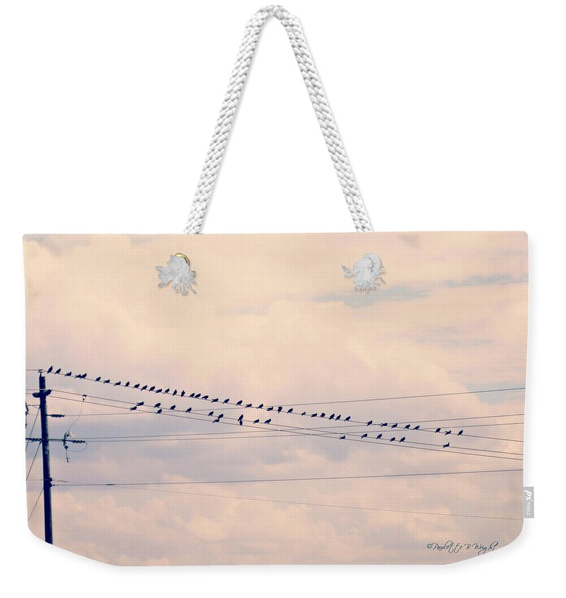 Nature Weekender Tote Bag featuring the photograph Birds On A Wire Pink And Blue by Paulette B Wright