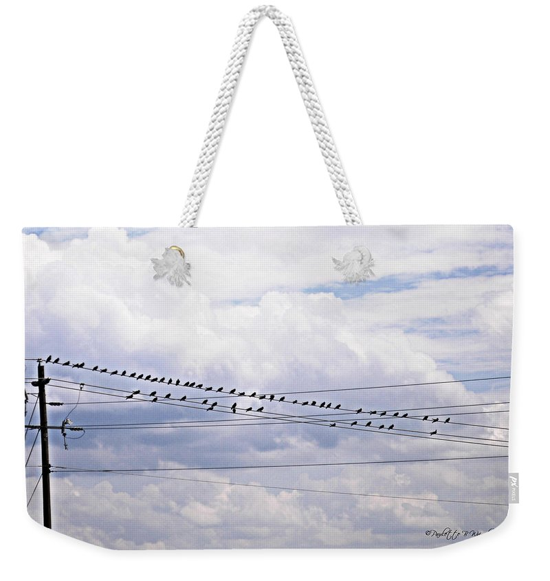 Art Weekender Tote Bag featuring the photograph Birds On A Wire Pushed by Paulette B Wright
