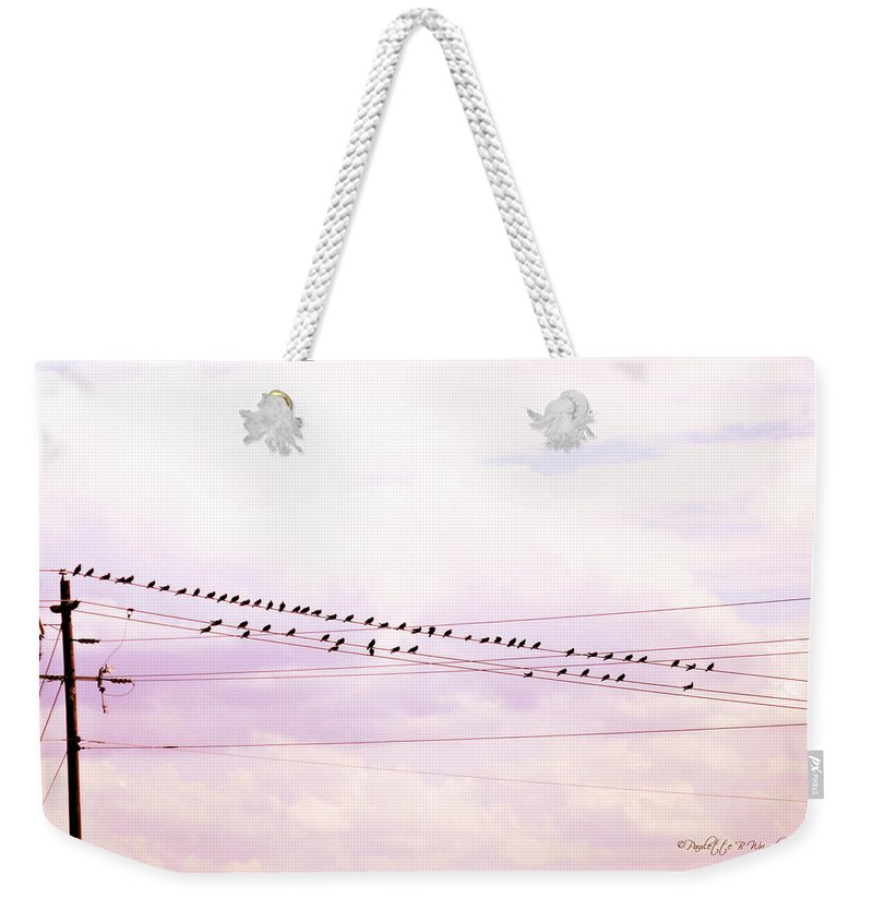 Nature Weekender Tote Bag featuring the photograph Birds On A Wire Red Tint by Paulette B Wright