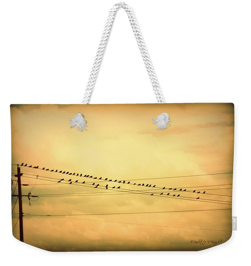 Interior Design Weekender Tote Bag featuring the photograph Birds On A Wire Yellow Orange by Paulette B Wright