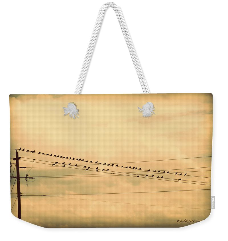 Art Weekender Tote Bag featuring the photograph Birds On Wires Back In Time by Paulette B Wright
