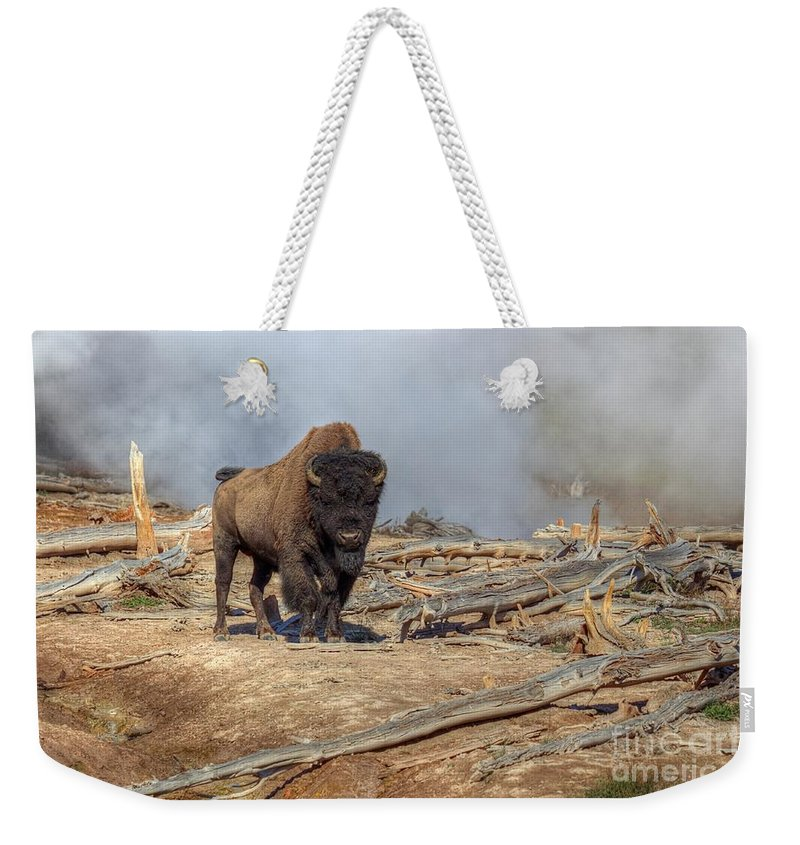 Yellowstone National Park Weekender Tote Bag featuring the photograph Bison And Geyser by James Anderson