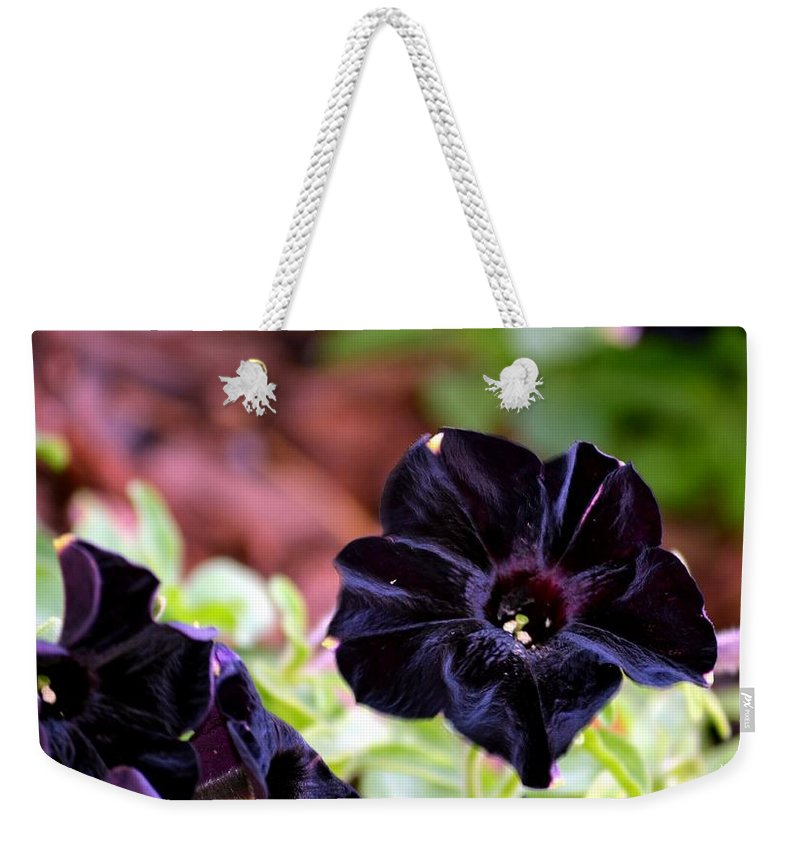 Black Weekender Tote Bag featuring the photograph Black And Velvety by Maria Urso